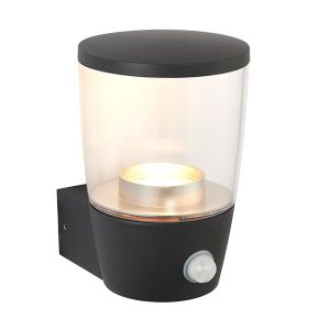Endon Canillo PIR 1lt wall outside light for sale at Lichfield Lighting